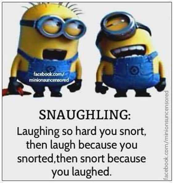 25 Funny Quotes Of The Day 20