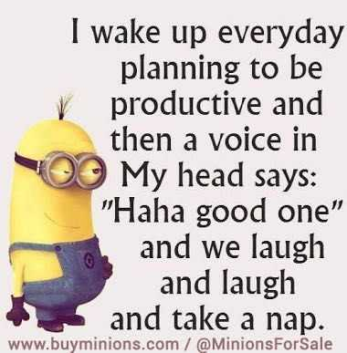 36 Funny Minions Quotes You're Going To Love 2
