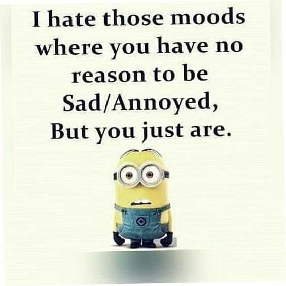 Funny Minions Quote You're Going To Love #funny quotes unknown