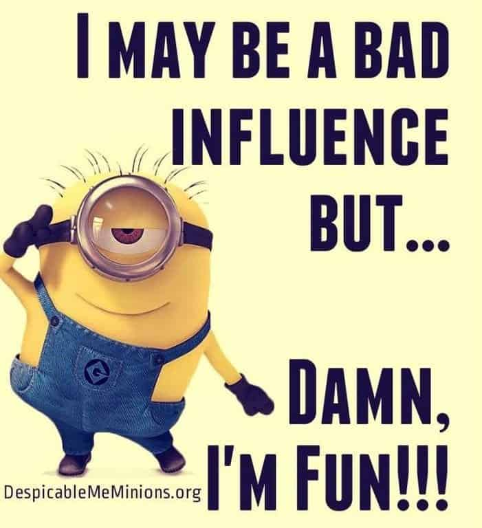 36 Funny Minions Quotes You're Going To Love 32