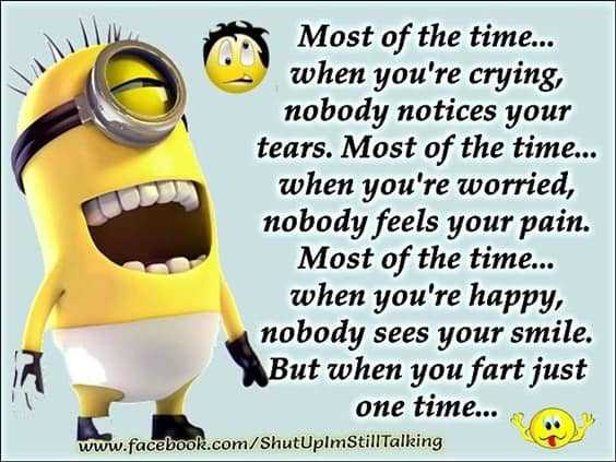 37 Very Funny minions Quotes 15
