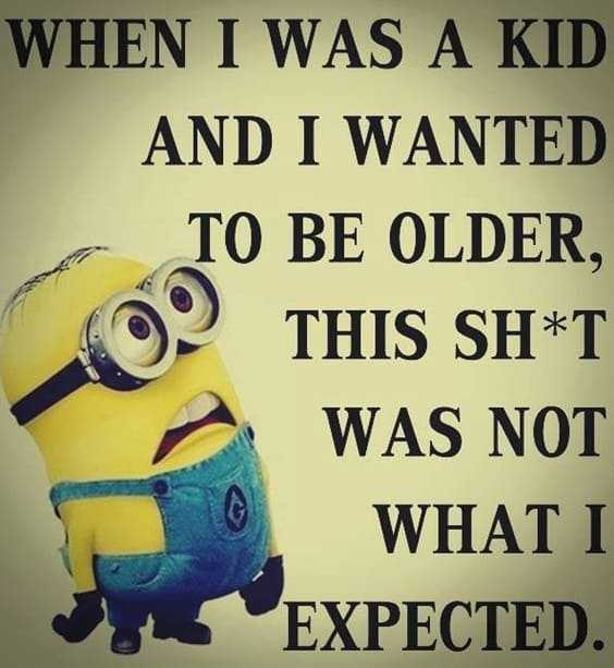 37 Very Funny minions Quotes 19