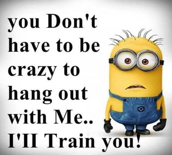37 Very Funny minions Quotes 34