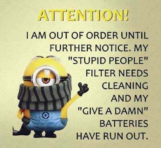 37 Very Funny minions Quotes 36