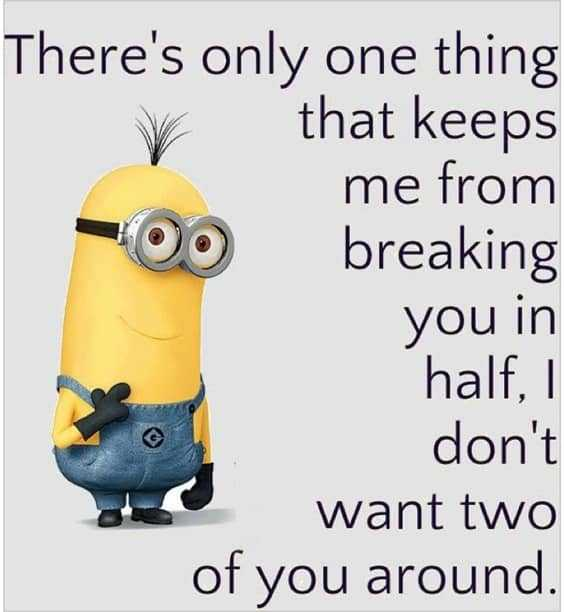 37 Very Funny minions Quotes 6