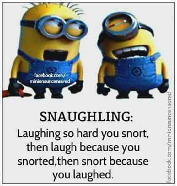 45 Funny Quotes Laughing So Hard 13