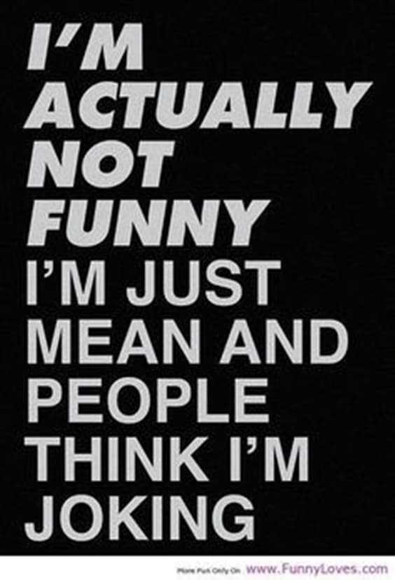 Top 100 Funny Quotes 71