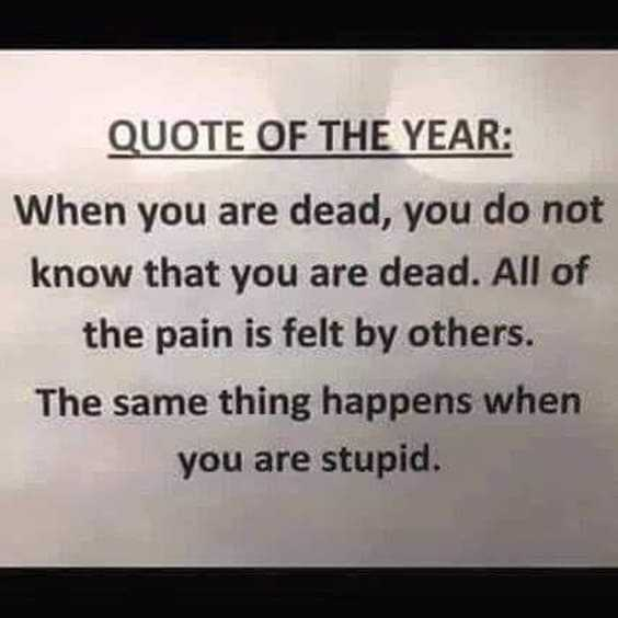 Top 100 Funny Quotes 94
