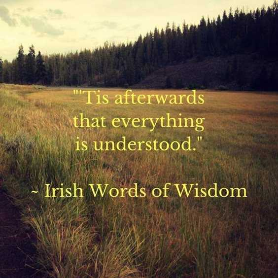 33 Words Of Wisdom Quotes With Images 18