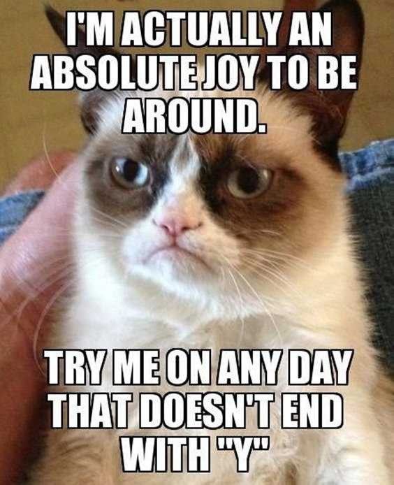 40 Funny Quotes Of The Day And Short Funny Sayings 26
