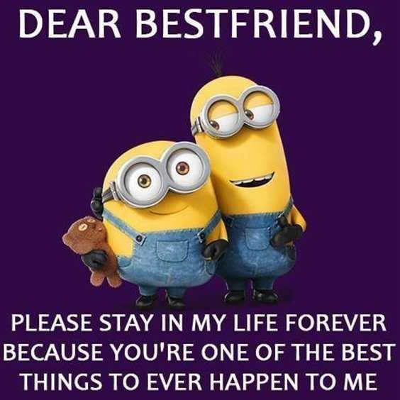 57 Funny Minion Quotes Of The Week And Funny Sayings 13