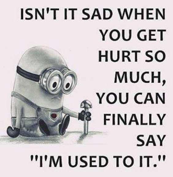 57 Funny Minion Quotes Of The Week And Funny Sayings 18