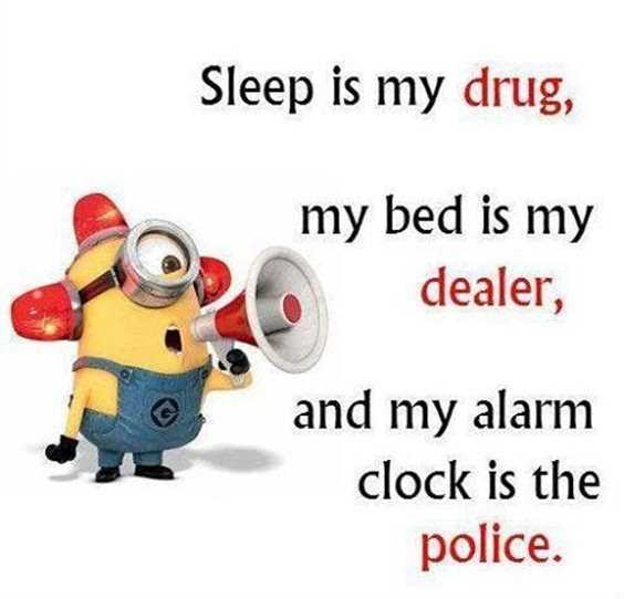 57 Funny Minion Quotes Of The Week And Funny Sayings 23
