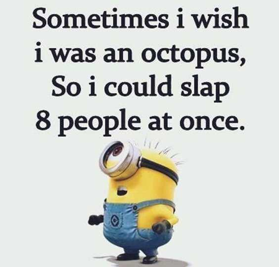 57 Funny Minion Quotes Of The Week And Funny Sayings 28