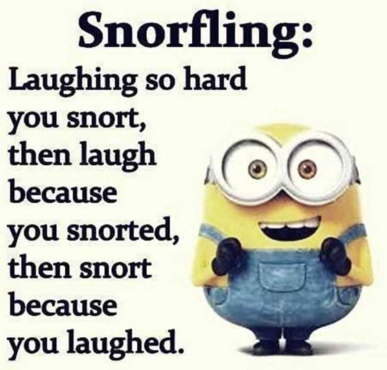 57 Funny Minion Quotes Of The Week And Funny Sayings 35