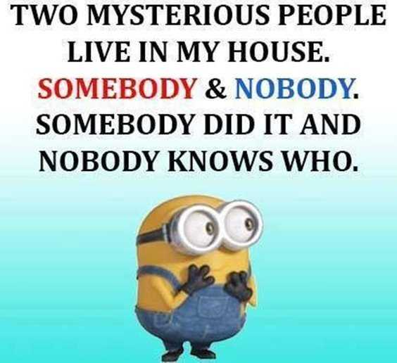 57 Funny Minion Quotes Of The Week And Funny Sayings 37