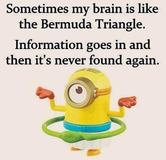 57 Funny Minion Quotes Of The Week And Funny Sayings 38