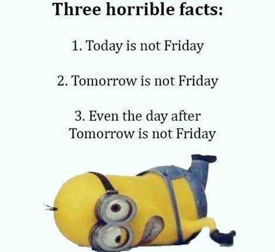 57 Funny Minion Quotes Of The Week And Funny Sayings 48