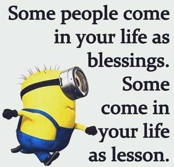 57 Funny Minion Quotes Of The Week And Funny Sayings 49