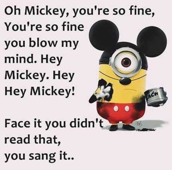 57 Funny Minion Quotes Of The Week And Funny Sayings 5