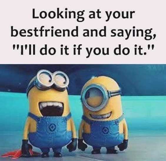 57 Funny Minion Quotes Of The Week And Funny Sayings 53