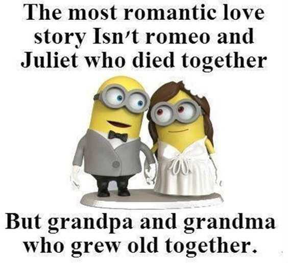 57 Funny Minion Quotes Of The Week And Funny Sayings 56
