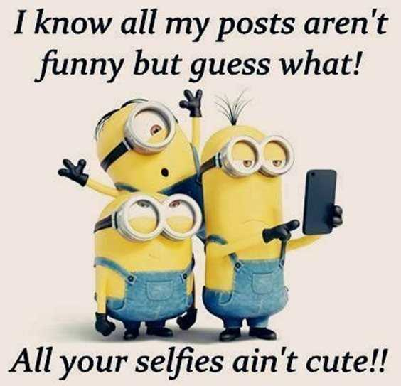 57 Funny Minion Quotes Of The Week And Funny Sayings 57