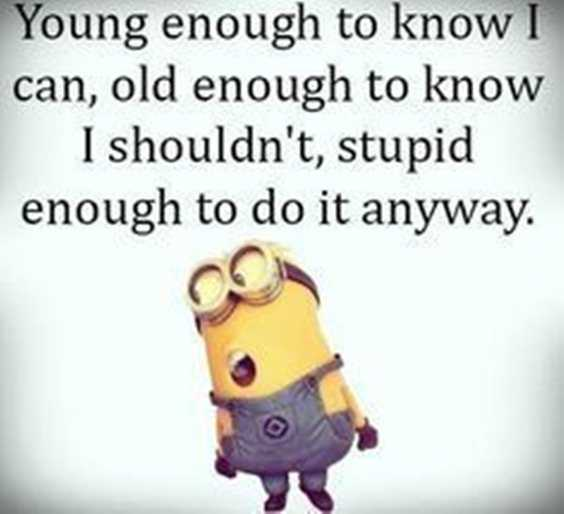 57 Funny Quotes of The Day and Funny Sayings 1