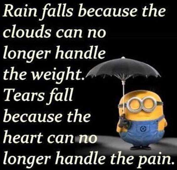 65 Best Funny Minion Quotes And hilarious pictures to laugh 22