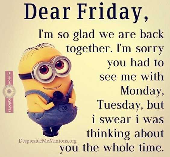 65+ Best Funny Minion Quotes And Hilarious Pictures To Laugh ...