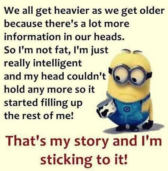 65 Best Funny Minion Quotes And hilarious pictures to laugh 29