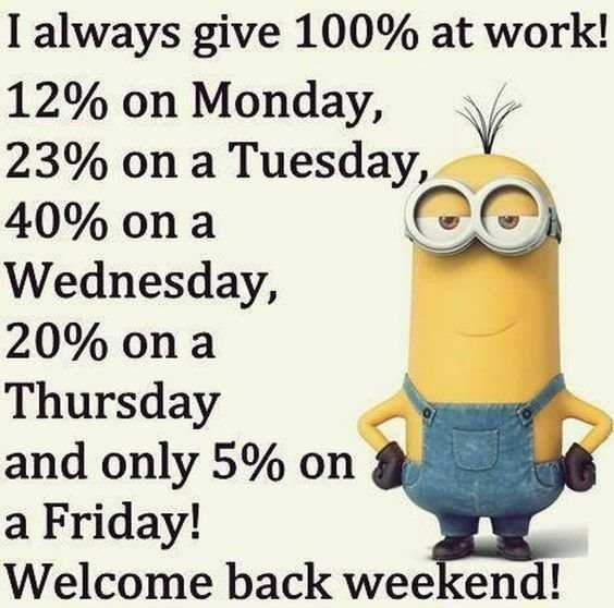 65 Best Funny Minion Quotes And hilarious pictures to laugh 3