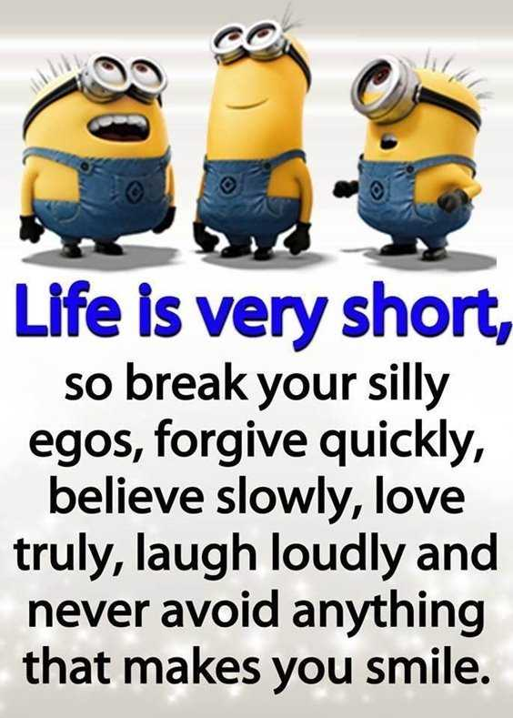 65 Best Funny Minion Quotes And hilarious pictures to laugh 31