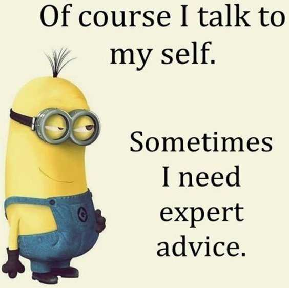 65 Best Funny Minion Quotes And hilarious pictures to laugh 39