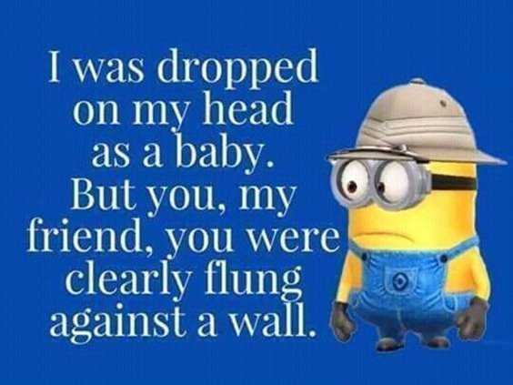 65 Best Funny Minion Quotes And hilarious pictures to laugh 45