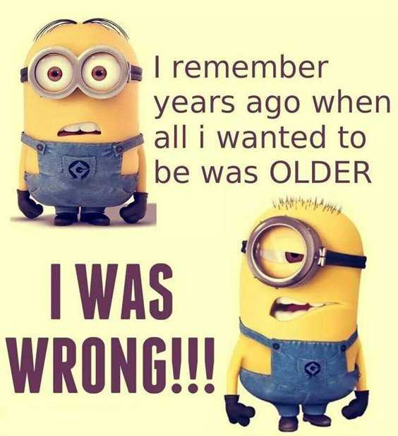 65 Best Funny Minion Quotes And hilarious pictures to laugh 57