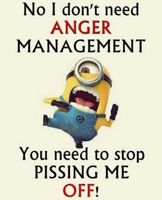 65 Best Funny Minion Quotes And hilarious pictures to laugh 65