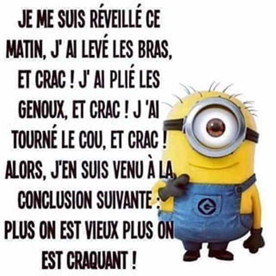 Top 97 Funny Minions quotes and sayings 14