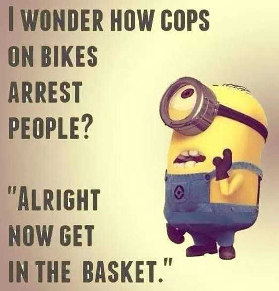Top 97 Funny Minions quotes and sayings 18