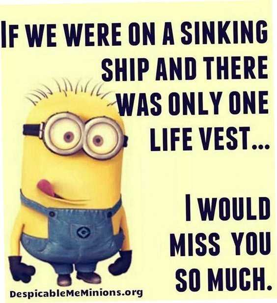 Top 97 Funny Minions quotes and sayings 4