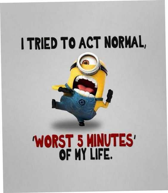Top 97 Funny Minions quotes and sayings 66