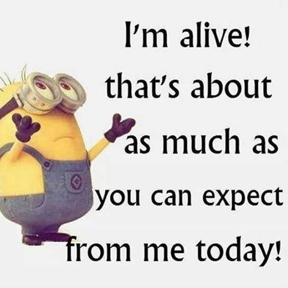 Top 97 Funny Minions quotes and sayings 77