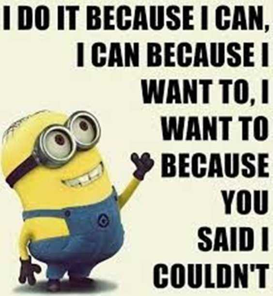 Top 97 Funny Minions quotes and sayings 78