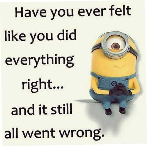 Top 97 Funny Minions quotes and sayings 81
