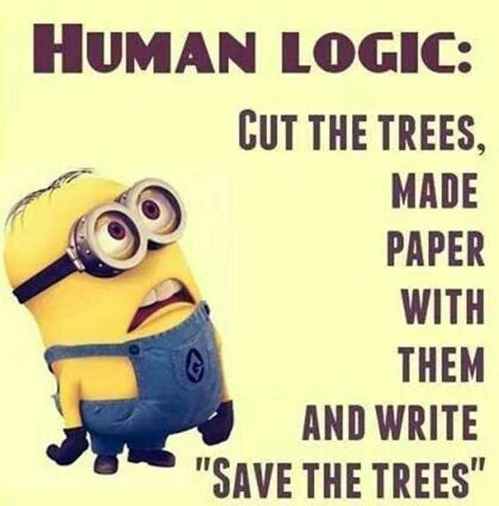 Top 97 Funny Minions quotes and sayings 83