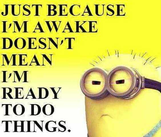 Top 97 Funny Minions quotes and sayings 97