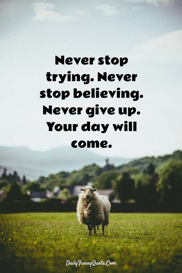 56 Motivational And Inspirational Quotes And Encourage Quote 47