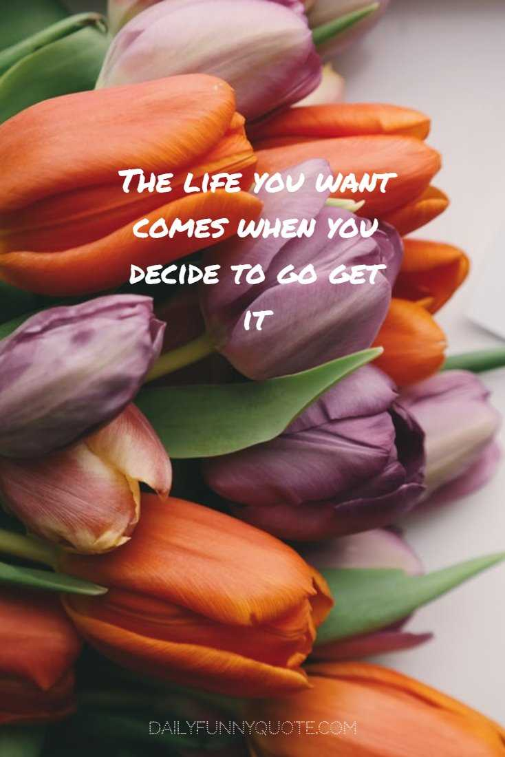 78 Encourage Quotes And Inspirational Words Of Wisdom 28
