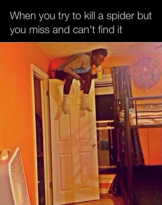 25 Funny Pictures Of Today That Prove The Struggle 11