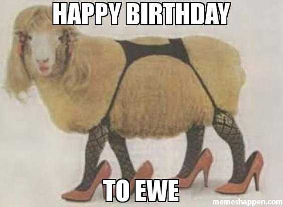 42 Happy Funny Birthday Images Funny Birthday Pictures 3